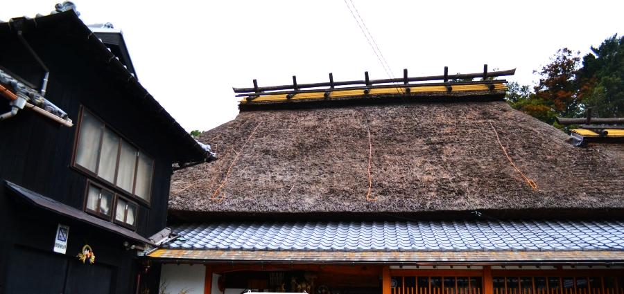 伊豆本店茅葺屋根